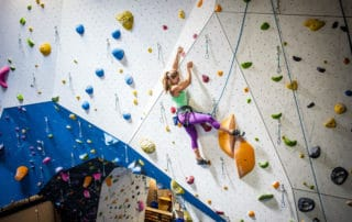 A typicial Artificial Top rope Climbing Wall shall include the following hardware_RMC